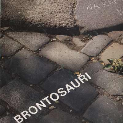 LP Na kameni kámen, Brontosauři, 1985