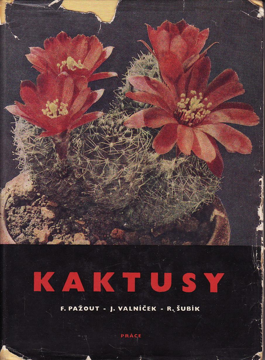Kaktusy / Pažout, Valníček, Šubík, 1965