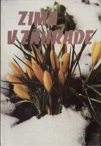 Zima na záhrade, 1983, slovensky