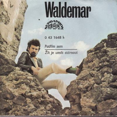 SP Waldemar Matuška, 1974 Patřím sem