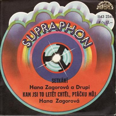 SP Hana Zagorová, Drupi, 1980, Setkání