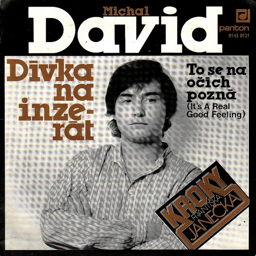SP Michal David, 1982, Dívka na inzerát