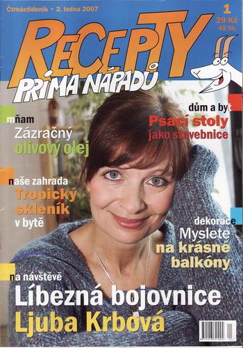 Časopis Recepty Prima nápadů 2007/01/02 Ljuba Krbová